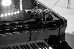 Ilugdin_Trio_new_album_030