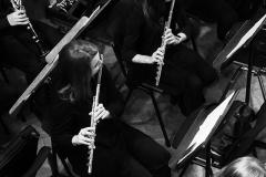 Leggiero_Orchestra_023