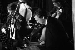 Sinatra_Strings_007