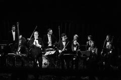 Sinatra_Strings_009